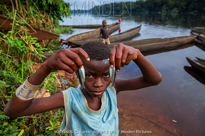 A boy holds his mornings' catch of fish. Young boys fish off of pirogues early in the morning on the Lukenie River at Oshwe's 'downtown port.' Oshwe, Democratic Republic of Congo. May 2017.