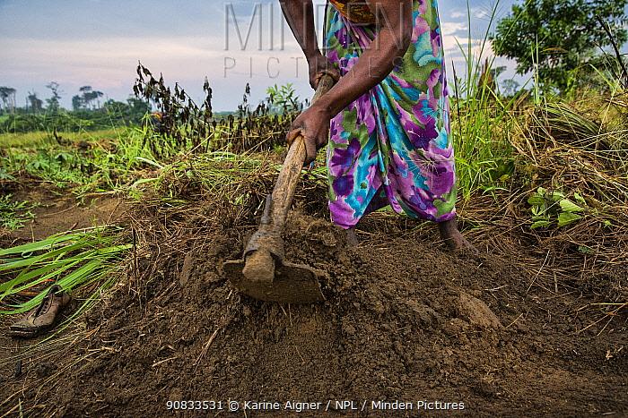Woman farming, Democratic Republic of Congo. May 2017.