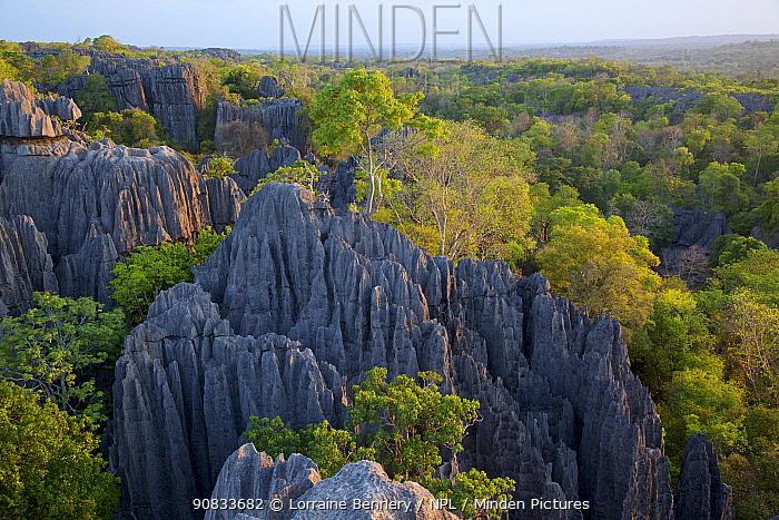 Mountain landscape at Tsingy Bemaraha National Park, Madagascar.