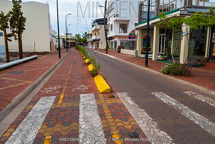 Puerto Ayora, during Covid-19 lockdown, deserted main street and park, normally crowded with tourists and locals, Santa Cruz Island, Galapagos Islands April 2020