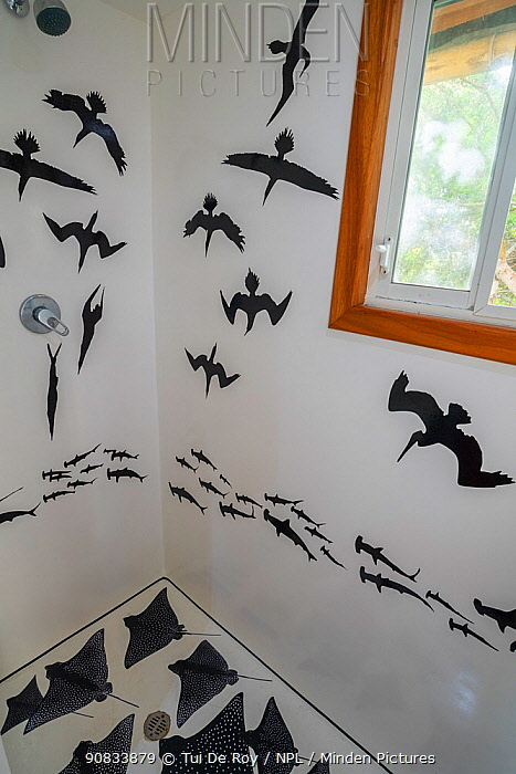 Fibreglass shower decorated with decals of photographer Tui De Roy's images. Taken during the Covid-19 lockdown, in Tui De Roy's tiny house consisting of three 20ft shipping containers. Santa Cruz Island, Galapagos Islands April 2020
