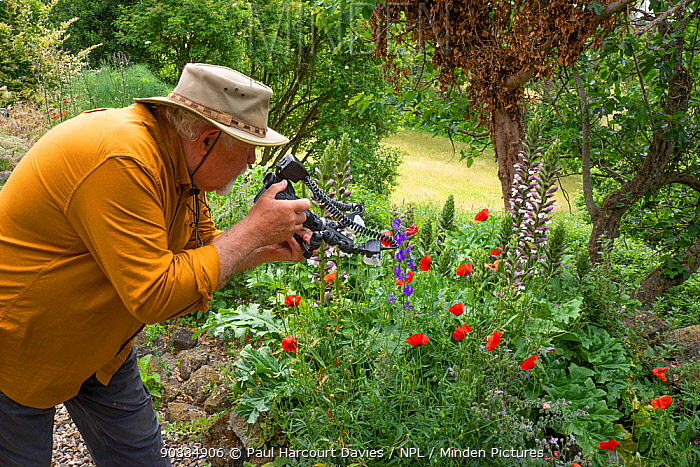 Photographer Paul Harcourt Davies taking photographs of flowers in the garden of his home. Podere Montecucco, Umbria, Italy, June 2020.