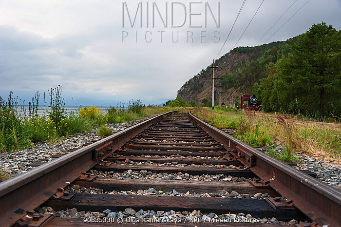 Tracks of the Circum-Baikal Railway, Lake Baikal, Siberia, Russia. July 2015.