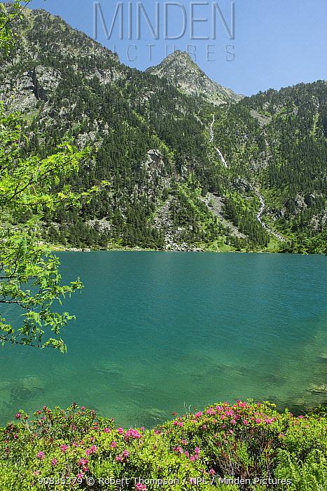 Shoreline around Lac de Gaube, Pyrenees National Park, France, June.
