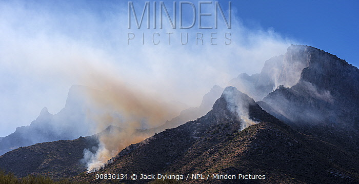Smoke from lightning started fire in steep craggy terrain, Pusch Ridge, Santa Catalina Mountains, Coronado National Forest, Arizona, USA. 6th June 2020.