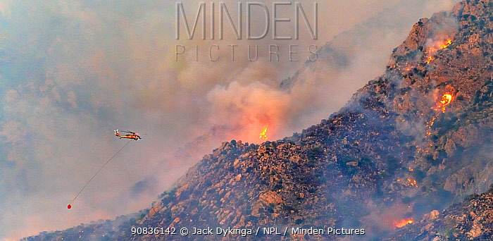 Lightning caused fire on Mount Lemmon, Forest Service Fire suppression Wildland Firefighters use helicopters to 'bomb' the hot spots to control the spread. Mount Lemmon's north palisades, Coronado National Forest, Arizona, USA. 12th June 2020.