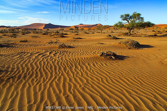Landscape of the Namib desert, Sossusvlei region, Namibia, March