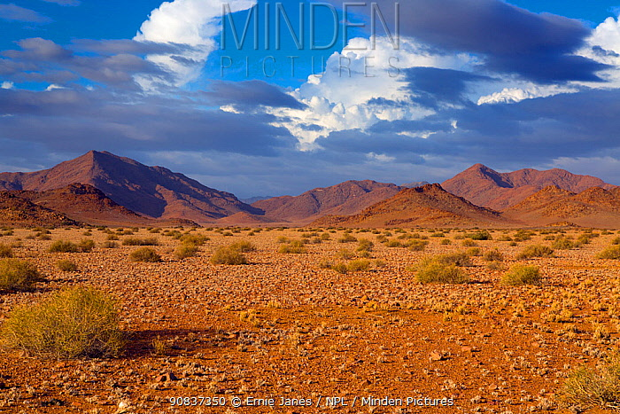 Sossusvlei region, Namib desert, Namibia, March