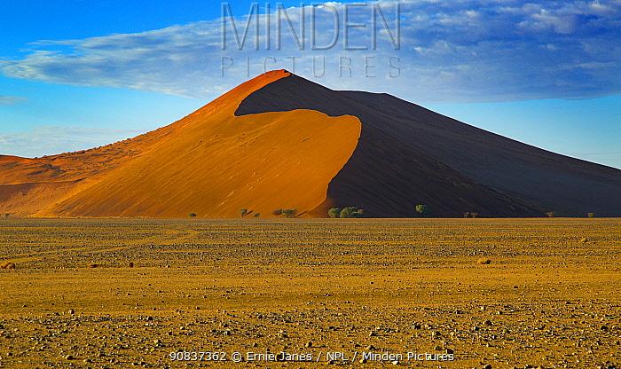 Giant dunes, Sossusvlei region, Namib desert, Namibia, March