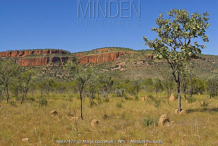 Cockburn Range on Gibb River Road, Kimberley, Western Australia. June 2010
