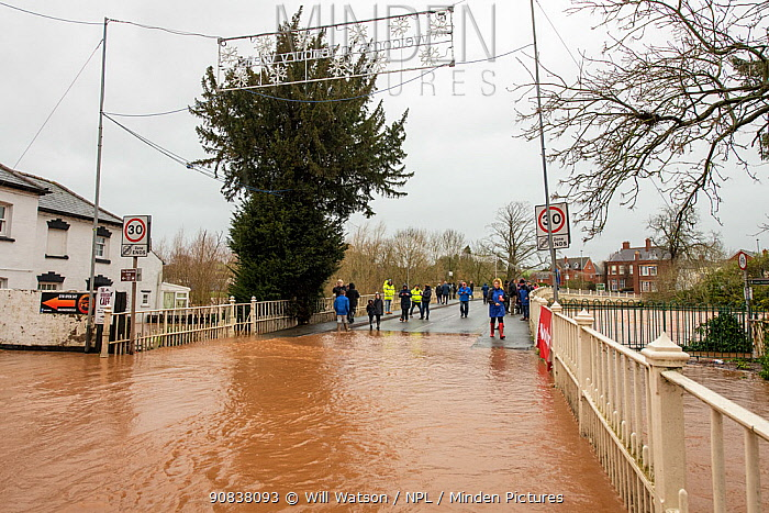People at the edge of Tenbury Wells Bridge during Storm Dennis floods, Tenbury Wells, Worcestershire, England, UK. February 2020.