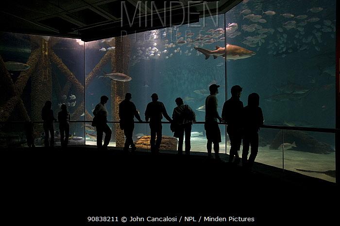 People viewing fish in aquarium, New Orleans-Louisiana USA, November 2006.