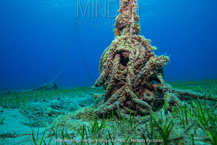 Discarded fishing rope on the sea floor, Canary Islands, June.