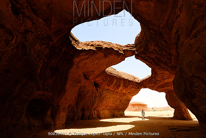 Erosion of sandstone cave roof in the Sahara desert. Ennedi Natural And Cultural Reserve, UNESCO World Heritage Site, Chad. September 2019.