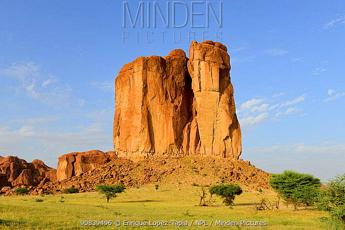 Eroded sandstone rock formation standing out in plateau in the Sahara desert, Ennedi Natural And Cultural Reserve, UNESCO World Heritage Site, Chad. September 2019.