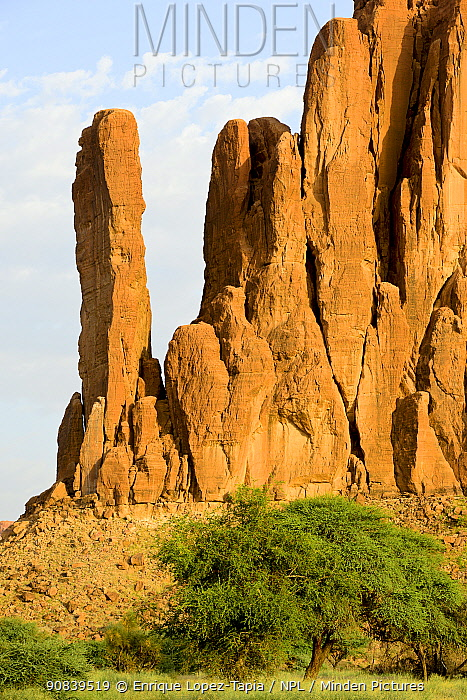 Sandstone rock formations in the Sahara desert. Ennedi Natural and Cultural Reserve, UNESCO World Heritage Site, Chad. September 2019.