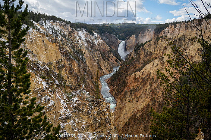 Waterfalls and Lower Yellowstone River flowing through rocky canyon. Yellowstone National Park Wyoming, USA. October 2019.