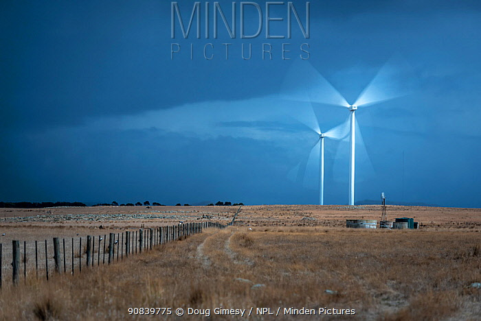 Two wind turbines with blades rotating, grassland in foreground. Mount Gellibrand Wind Farm, Victoria, Australia. March 2019.