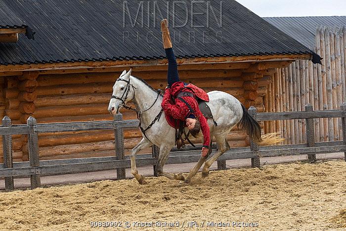 Rider performing Cossack stunts on Akhal-Teke horse. Kievan Rus Park, a reconstruction of the former capital Rus. Ukraine, 2020.