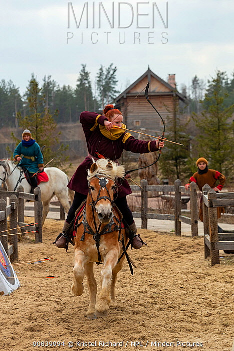 Archer aiming arrow whilst mounted on cantering Haflinger horse. Kievan Rus Park, a reconstruction of the former capital Rus. Ukraine, 2020.