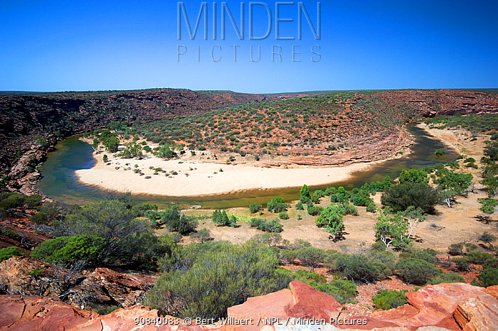 Meander of Murchison River surrounded by shrubland, viewed from Nature's Window. Kalbarri National Park, Western Australia. October 2019.