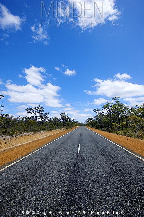 Chester Pass Road, Western Australia. November 2019.