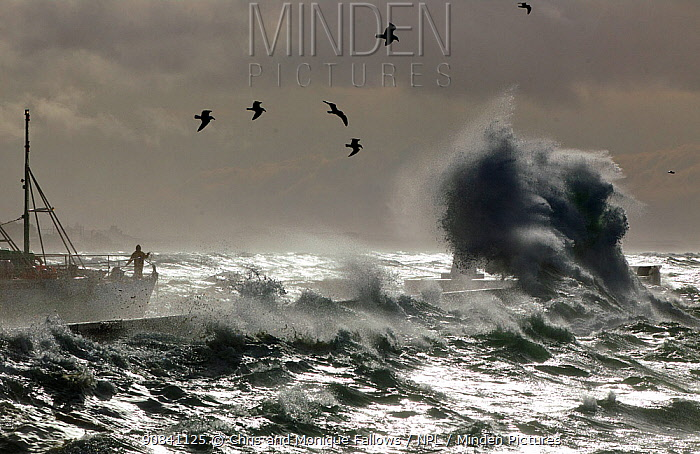Storm over Kalk Bay harbor with boat, False Bay, Cape Town, South Africa.
