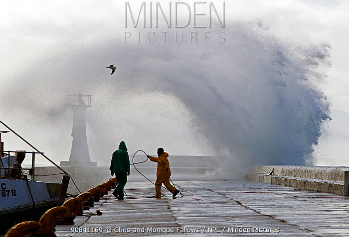 Storm sending spray over pier, Kalk Bay harbor, False Bay, Cape Town, South Africa.