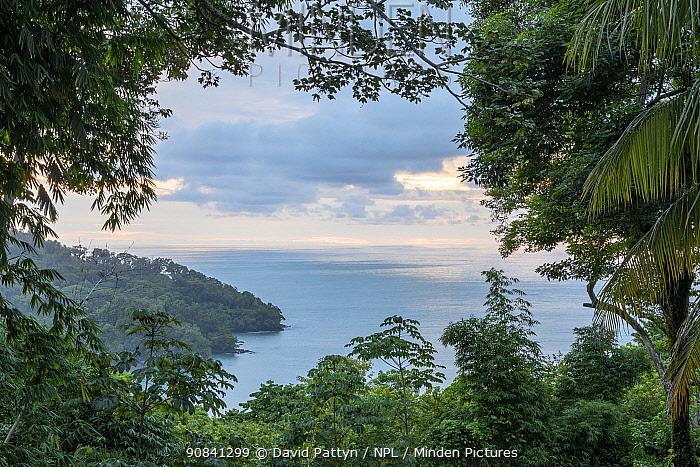 Coastal rainforest landscape at the edge of the Pacific Ocean Manuel Antonio National Park, Quepos, Costa Rica