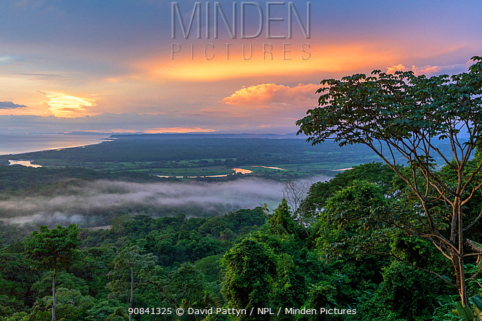 View at sunset over the Pacific Ocean where the Tarcoles River enters the ocean. Carara National Park, Tarcoles, Costa Rica