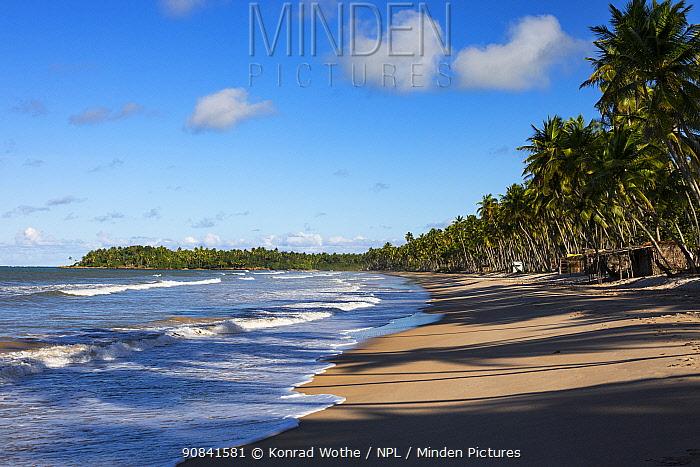 Sandy beach, Praia da Cueira, Boipeba Island, Bahia, Brazil.