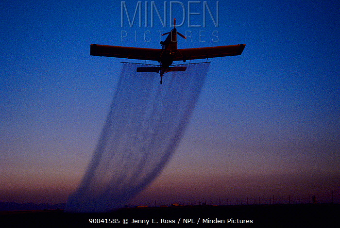 Crop-dusting plane arches up into the sky at twilight as it sprays insecticide onto an agricultural field in Imperial Valley, California, USA.