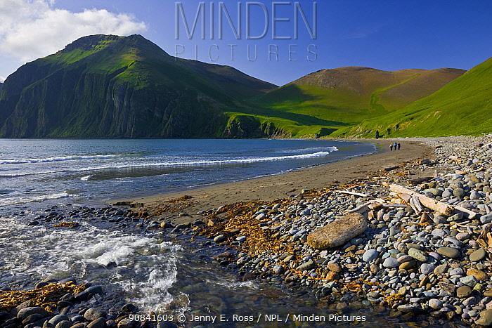 Landscape of Peschanaya Bay, Medny Island, Commander Islands, Russia.
