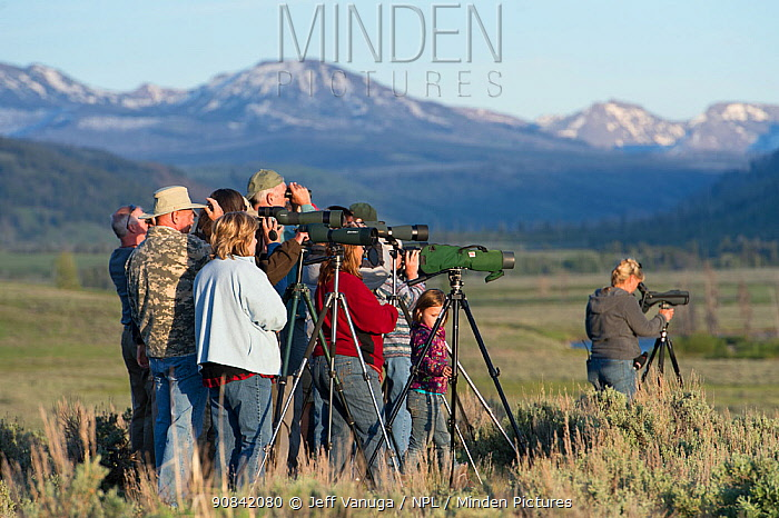 Wolf watchers in Lamar Valley. Yellowstone National Park, USA. June 2013.