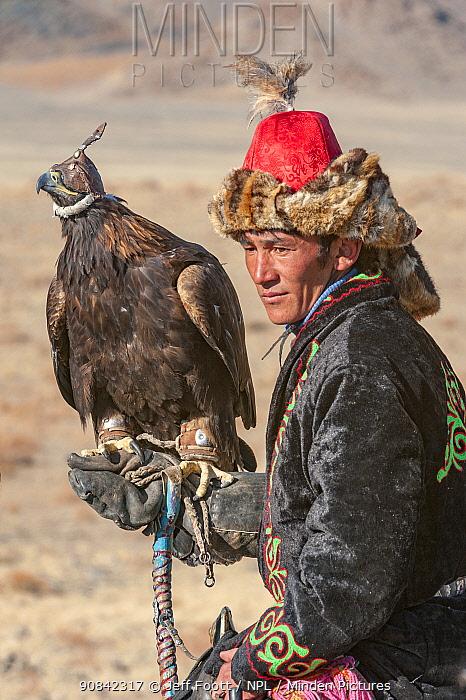 Eagle hunter with female golden eagle (Aquila chrysaetos) at the Eagle Hunters festival near Ulgii Western Mongolia.
