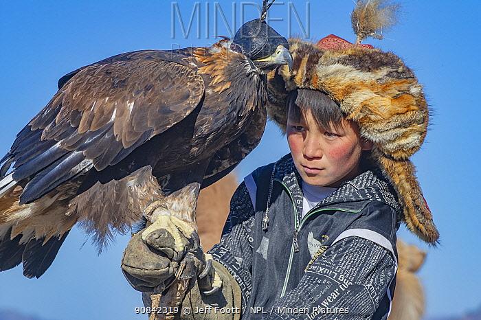 Child with father's female golden eagle (Aquila chrysaetos) at the Eagle Hunters festival near Ulgii Western Mongolia.