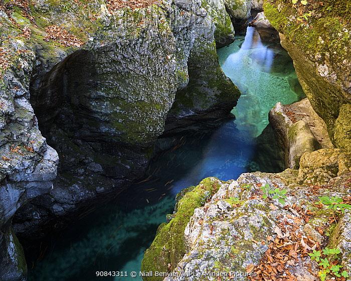 Mostnica gorge, Slovenia, October 2017.