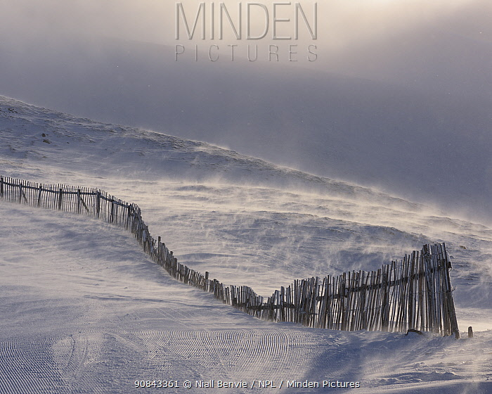 Fence line in snow, Grampian Mountains, Scotland, UK. February.