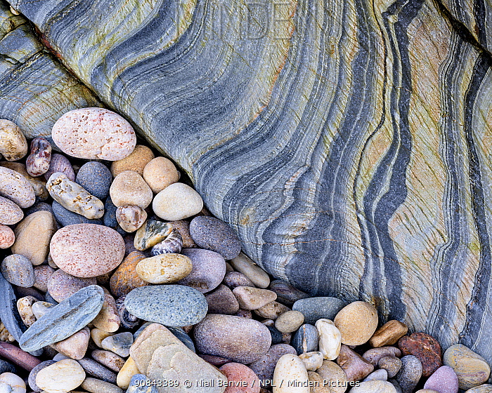 RF - Slate and pebbles, near Kintra, Islay, Argyll, Scotland, UK. November.(This image may be licensed either as rights managed or royalty free.)