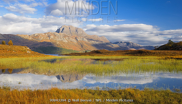 RF - Loch Maree and Slioch, Torridon, Scotland (This image may be licensed either as rights managed or royalty free.)