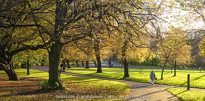 Walkers and cyclists in Kelvingrove Park, Glasgow, Scotland, UK, November.