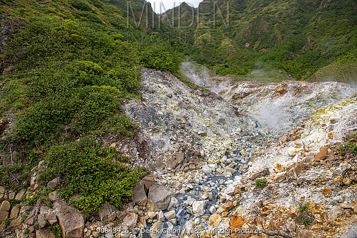 Volcanic stream in Valley of Desolation, Morne Trois Pitons National Park, Dominica, Lesser Antilles. 2020.