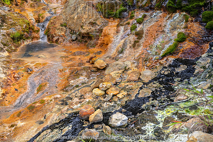 Volcanic mineral pools with liquid carbon on rocky slope, deposited through volcanic activity. Valley of Desolation, Morne Trois Pitons National Park, Dominica, Lesser Antilles. 2020.