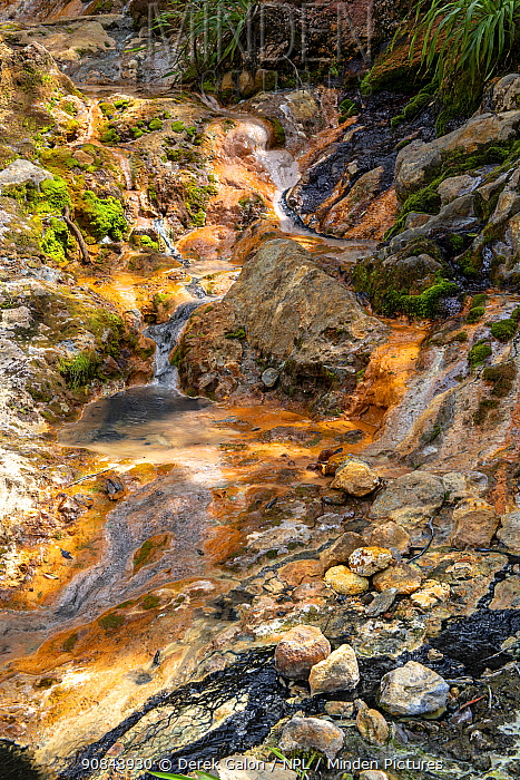 Volcanic mineral pools with liquid carbon on rocky slope, created by volcanic activity. Valley of Desolation, Morne Trois Pitons National Park, Dominica, Lesser Antilles. 2020.