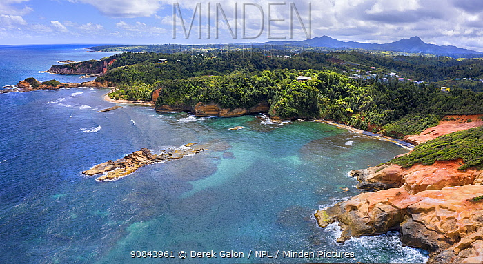 Red Rock coastline and rainforest, mountains in distance, aerial view. Dominica, Lesser Antilles. 2020.