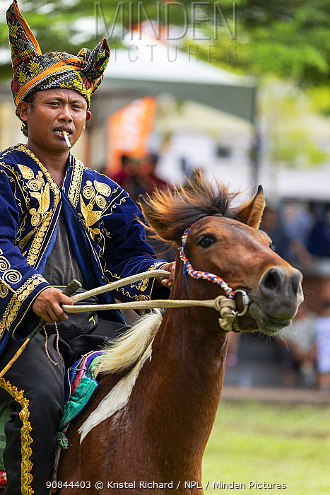 Traditionally dressed Bajau horsemen, also known as the Cowboys of the East, get ready to display their riding skills on colourfully dressed Bajau horses, during the Tamu Besar (Big Market) Festival, in Kota Belud, Sabah, Borneo, Malaysia