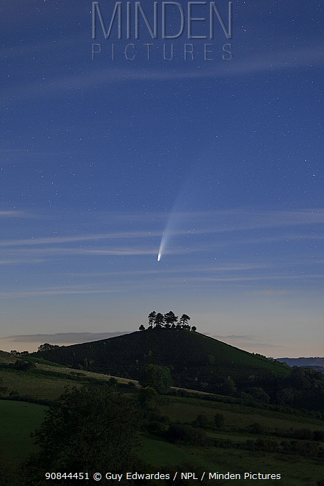 Comet C/2020 F3 Neowise over Colmer's Hill , Bridport, Dorset, UK. July 2020