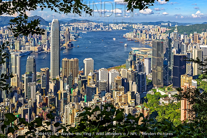 Victoria Harbor from Victoria Peak, Hong Kong, China, June 2016.