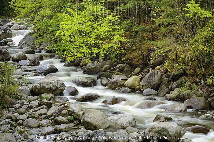 River, Tangjiahe Nature Reserve, Sichuan, China.