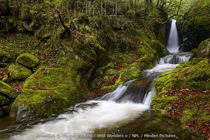 Small waterfalls, Tangjiahe Nature Reserve, Sichuan, China.